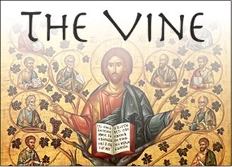 The Vine – March 2019
